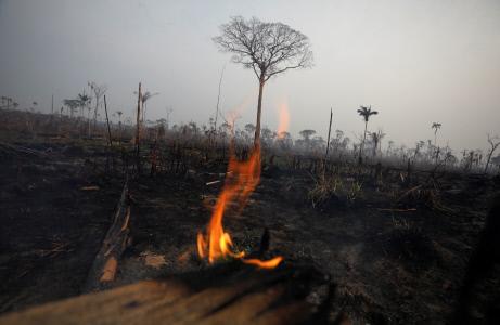 DEVASTADORES EFECTOS DEL INCENDIO EN LA AMAZONIA BRASILEÑA