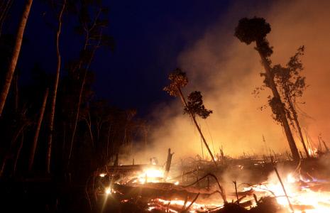 CONTINUAN LOS INCENDIOS EN EL AMAZONAS