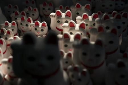 TOKYO 2020: GATOS DE LA SUERTE EN EL TEMPLO BUDISTA DE GOTOKUJI