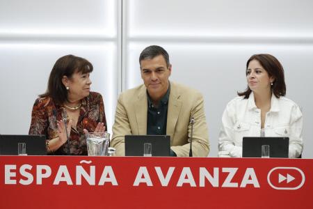 PEDRO SANCHEZ EN LA EJECUTIVA FEDERAL DEL PSOE